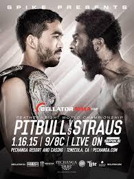 bellator 132 fight poster