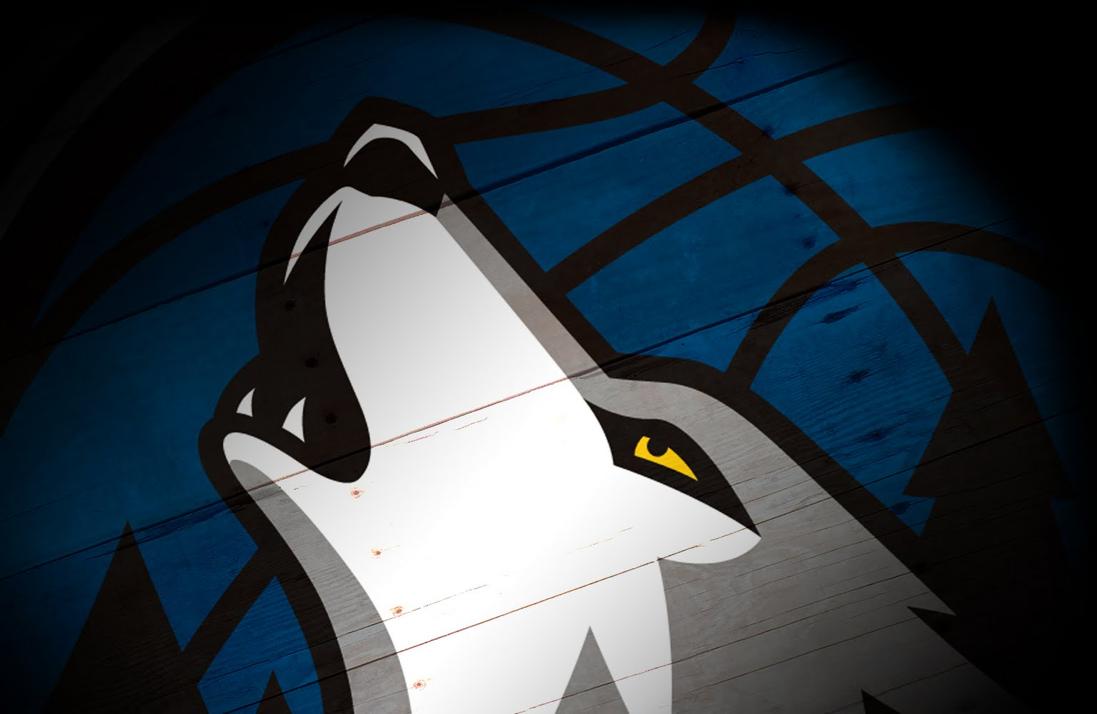 NBA PowerScore: Top 5 Wolves of the Week