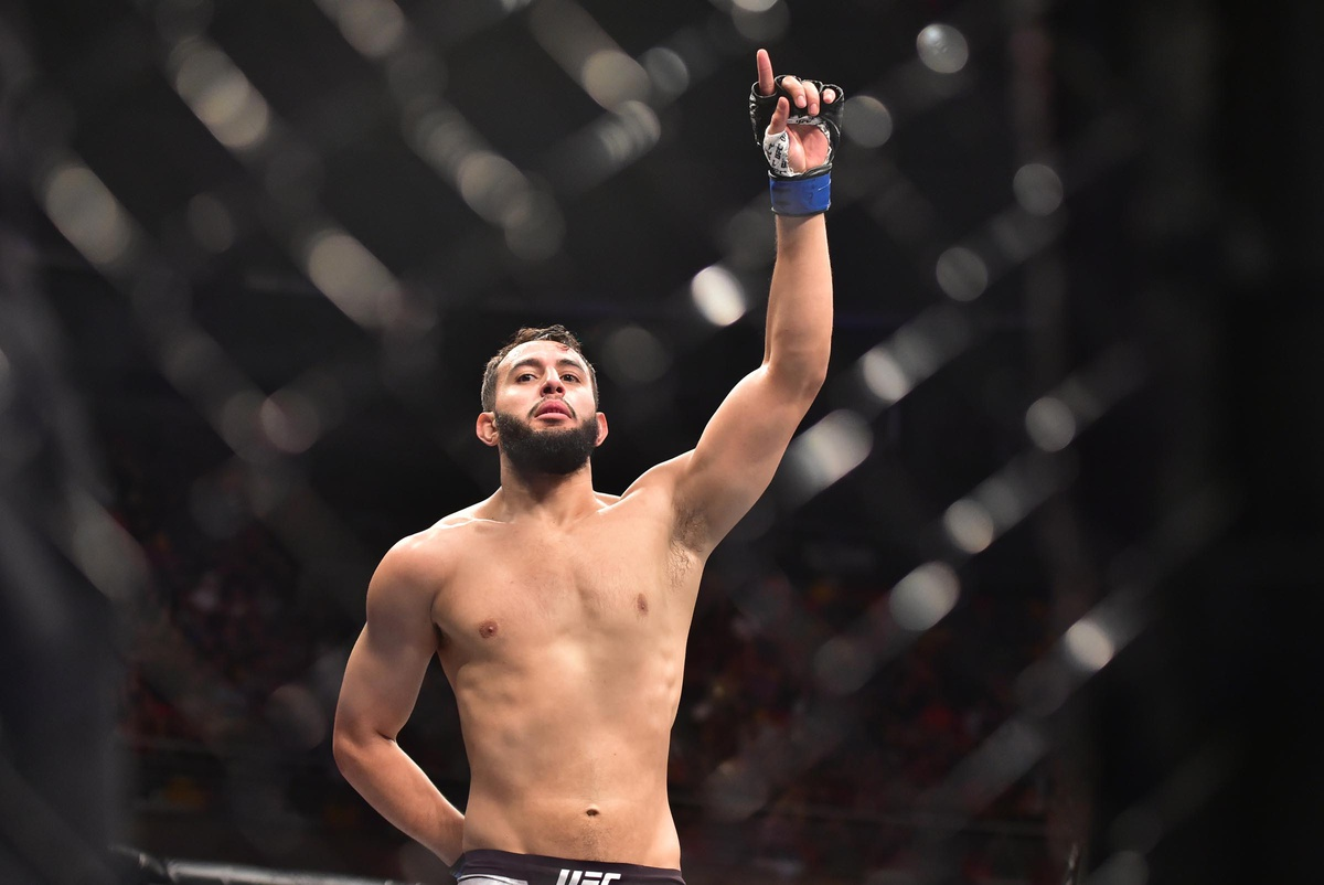 dominick reyes career earnings