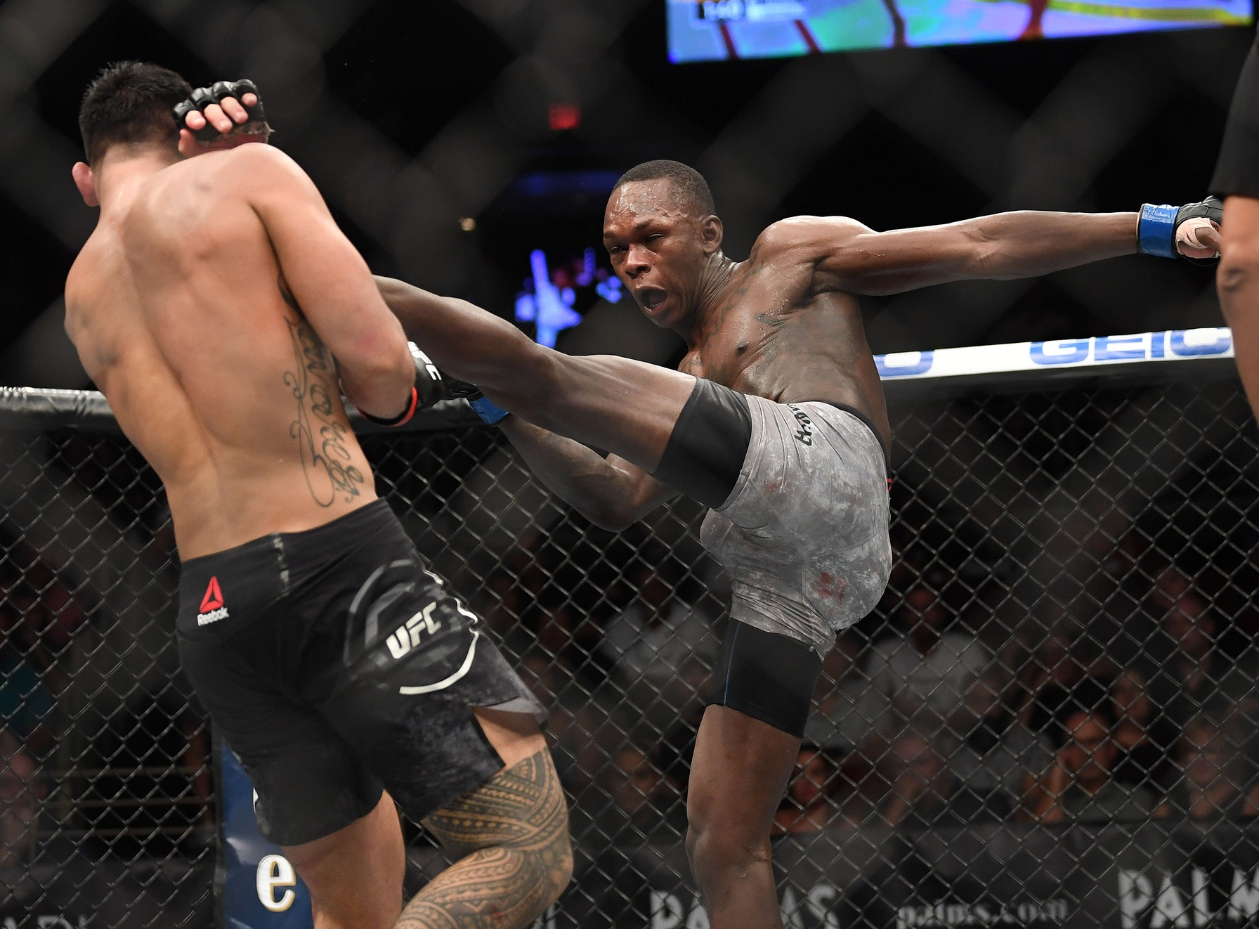 Israel Adesanya Career Earnings