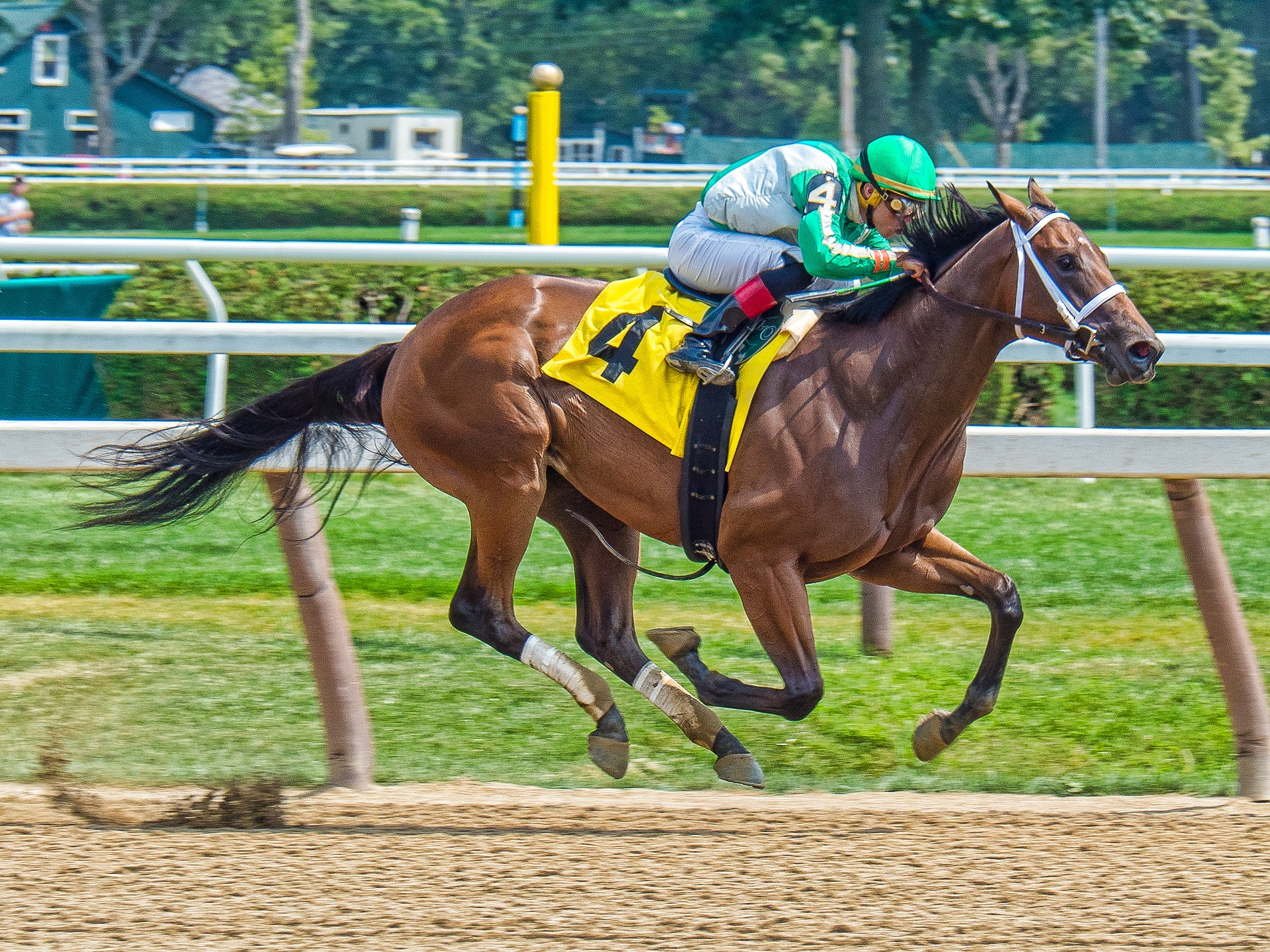 The Latest Maneuvers Of 2019 Kentucky Derby Betting
