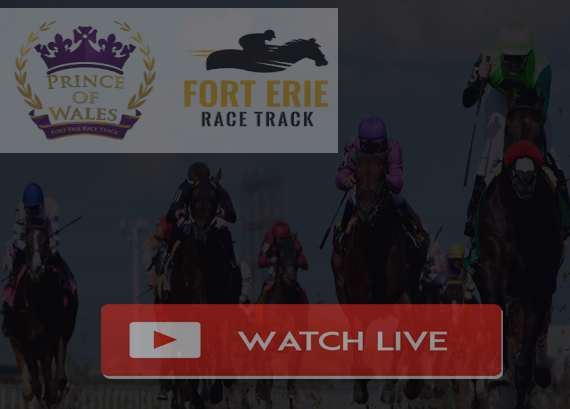 Prince of Wales Stakes 2019 Live Stream