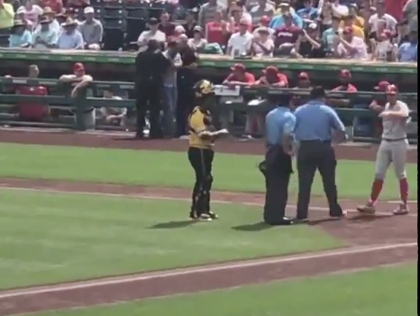 Look: Fan casually strolls onto field, enters batter's box during game