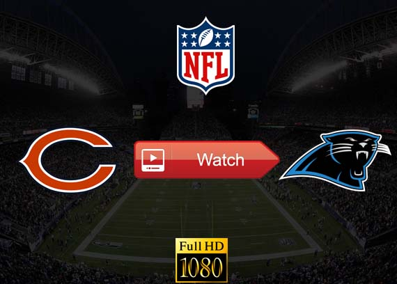 Bears vs Panthers live stream reddit