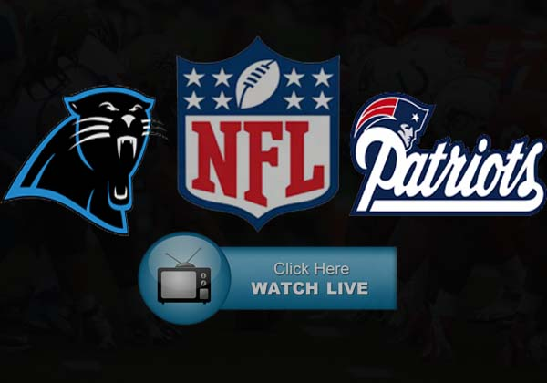 Panthers vs Patriots Live Stream