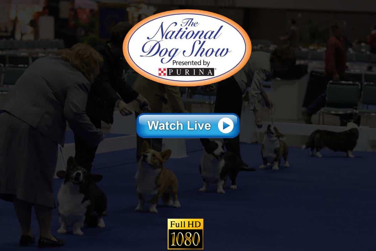 National Dog Show live streaming Reddit