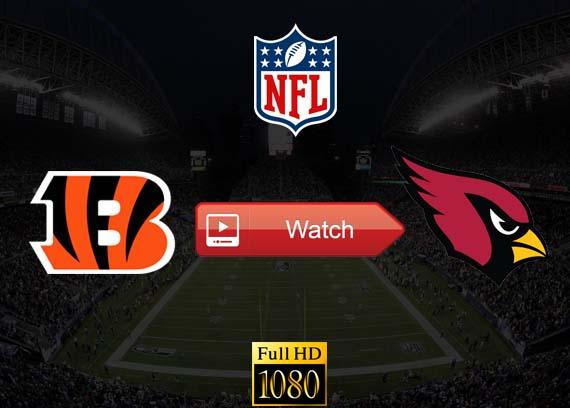Bengals vs Cardinals live stream reddit