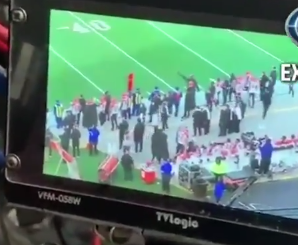 Footage of Patriots videotaping Bengals' sideline during game emerges