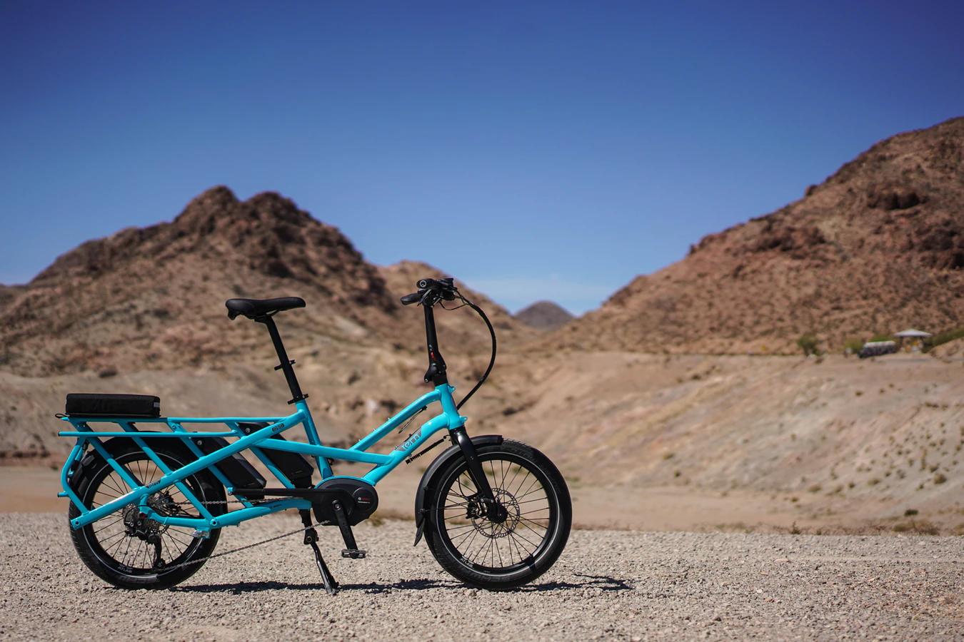 E-bikes, Mopeds, or Pedelecs: Trending Electric Bikes
