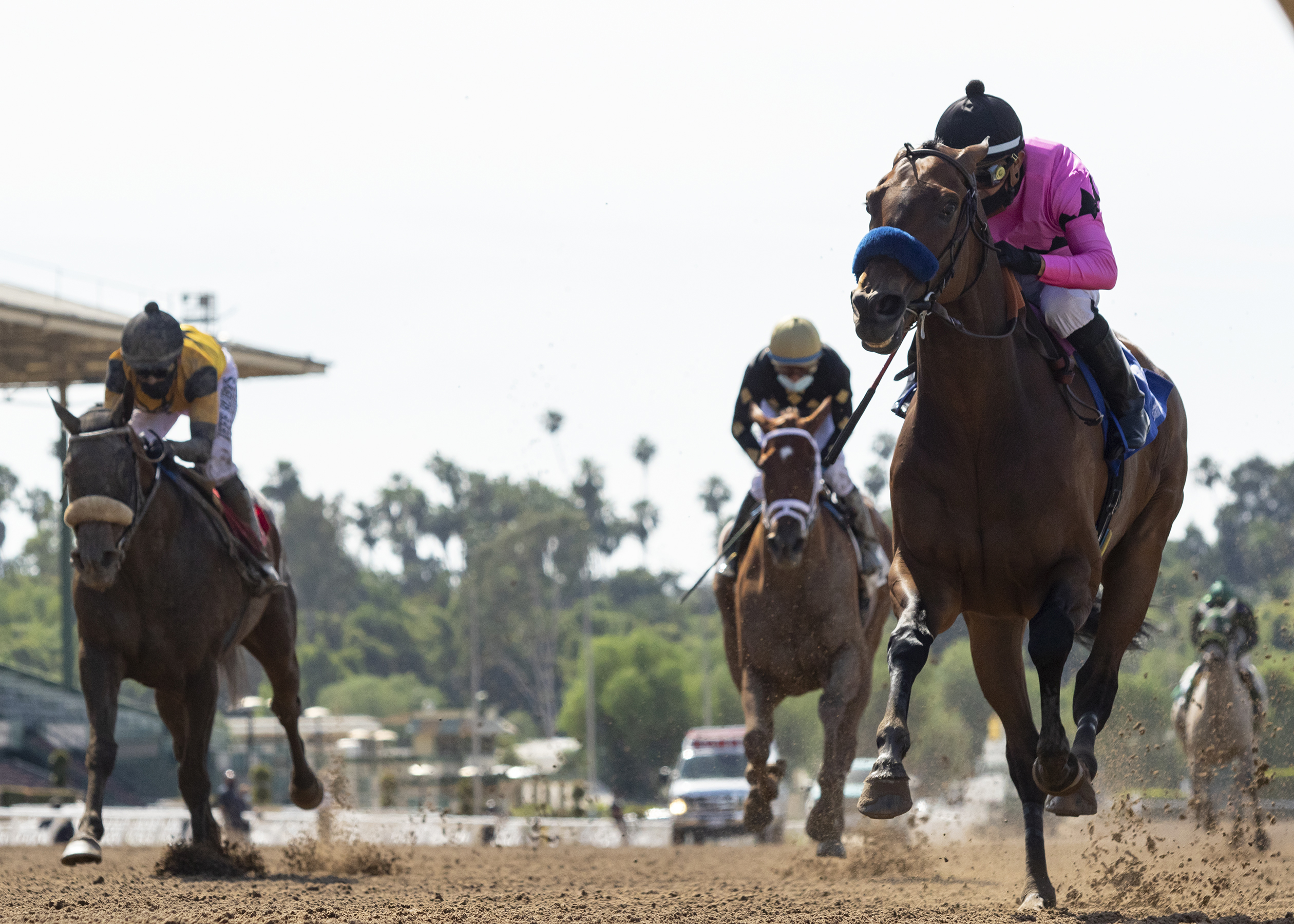 5 Tips To Help Win Through Horse Racing