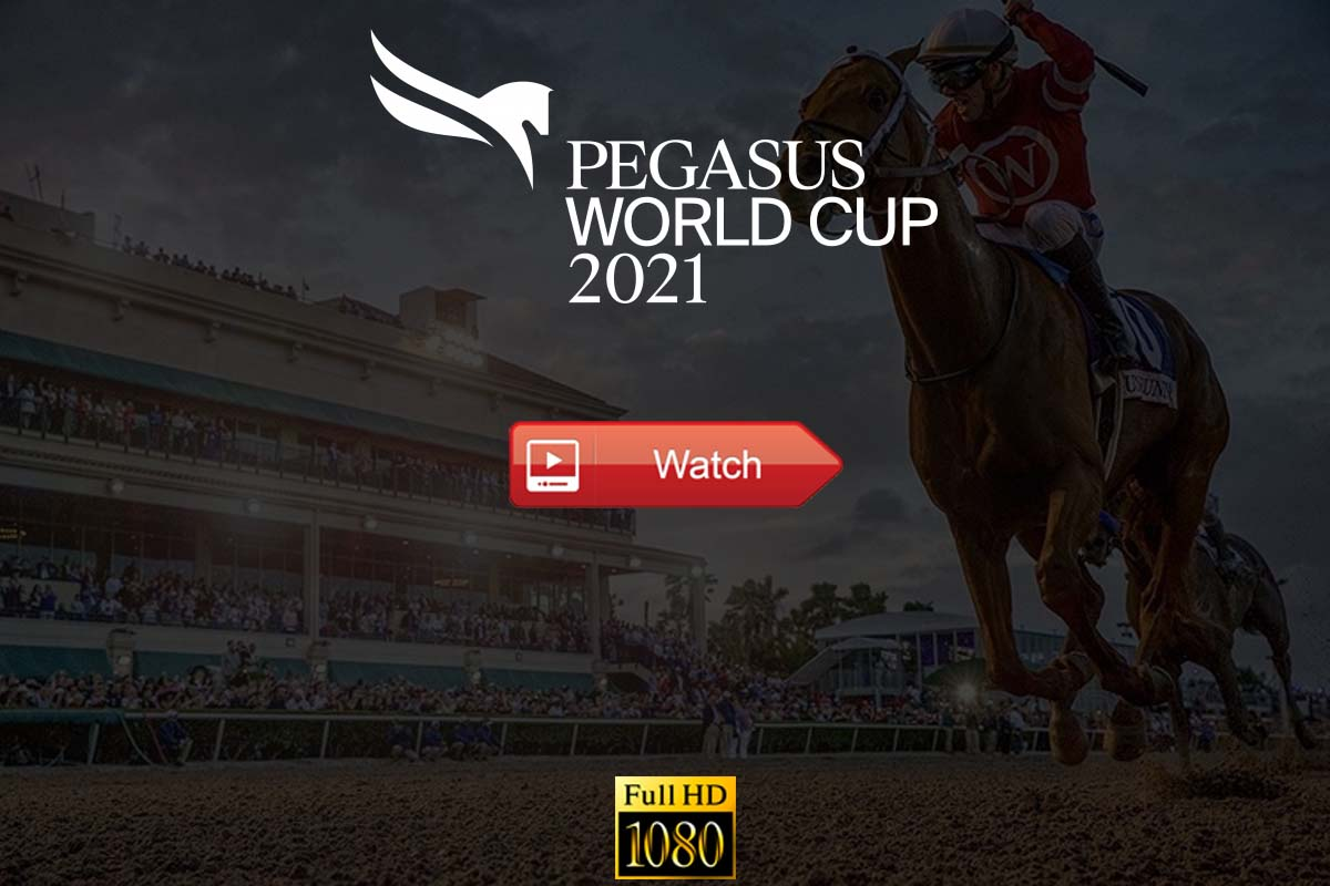 Pegasus World Cup live stream