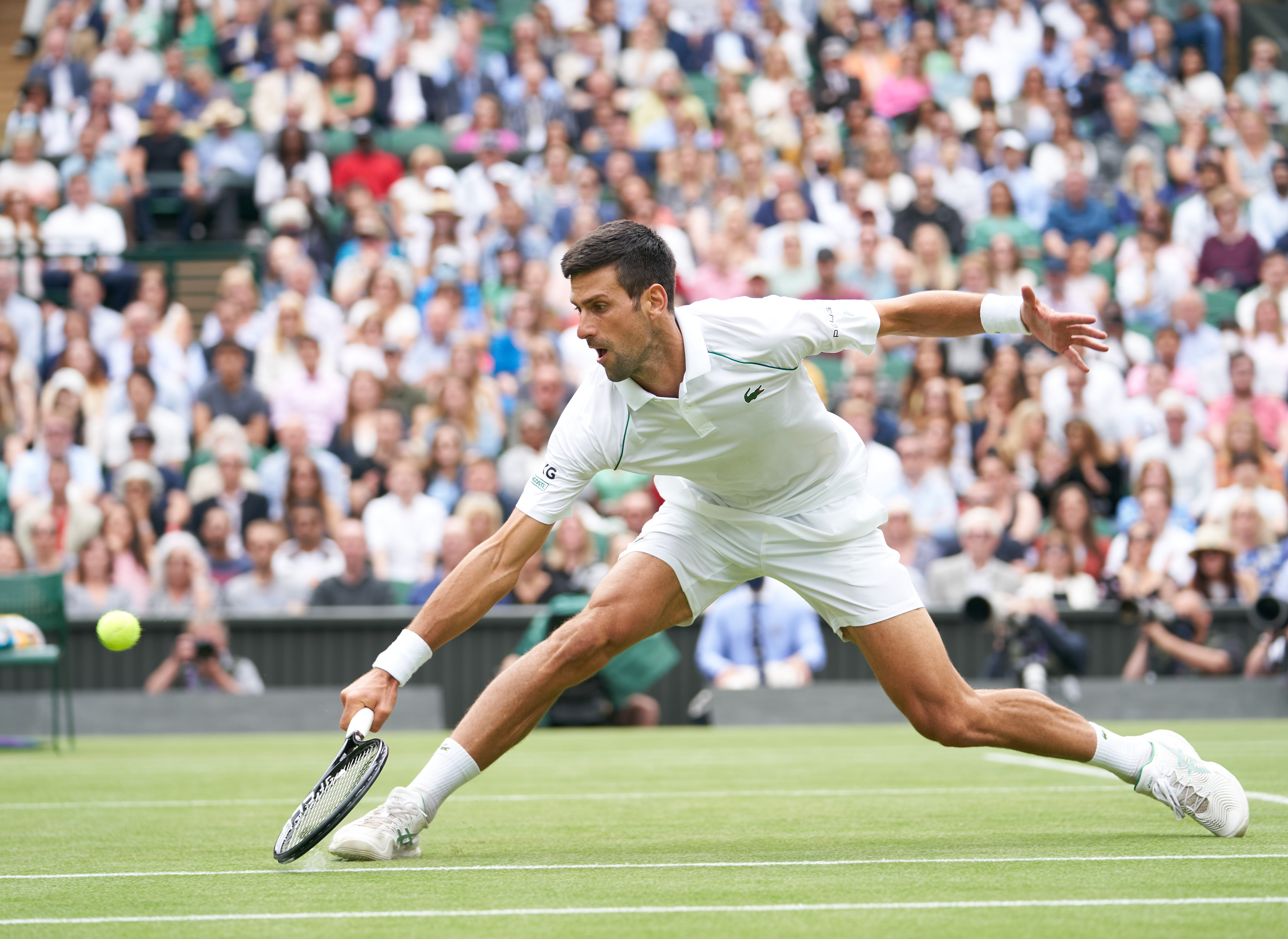 Castle tipping Djokovic to equal Grand Slam record