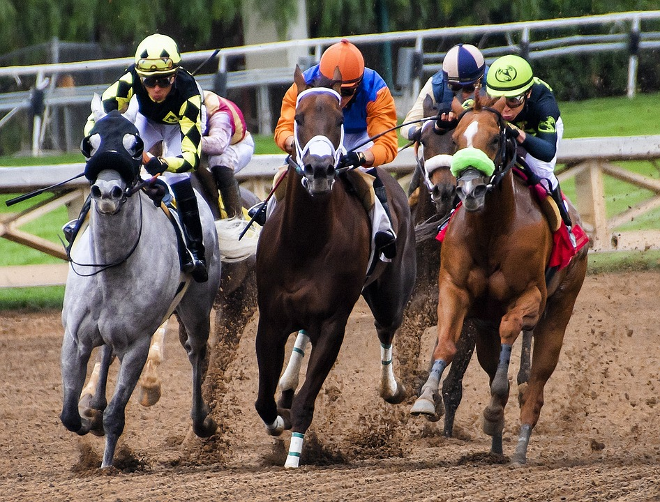 Guide to Horse Race Betting for Beginners